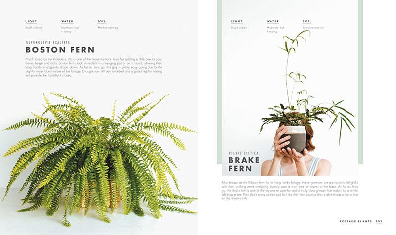 Fashion Styling Books Amazon